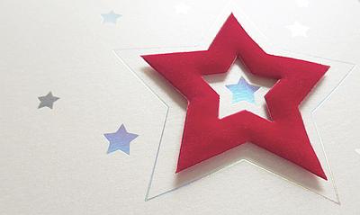 Weißer Metallic-Karton mit Holofolienprägung und Stern-Applikation aus Samt