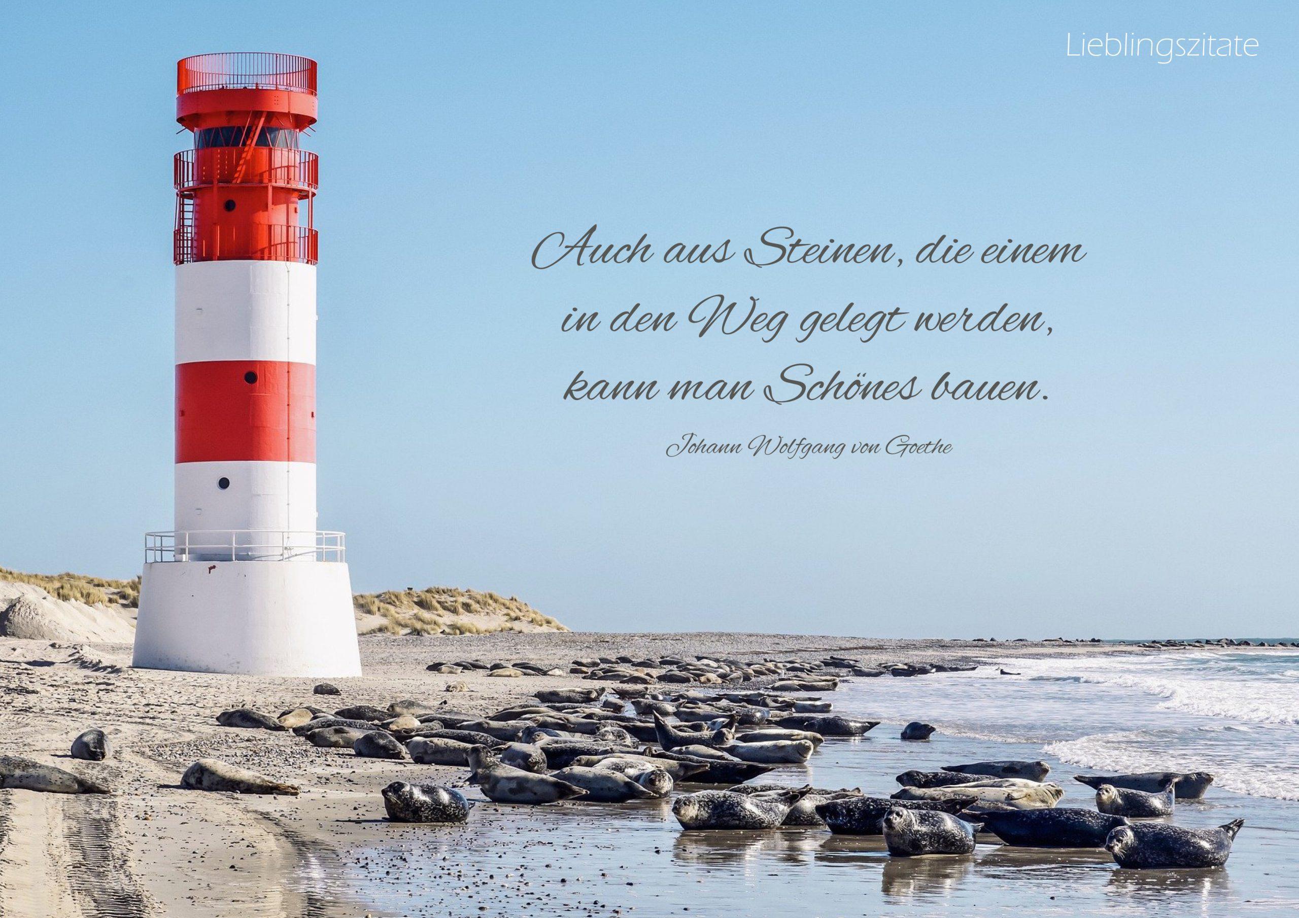 Zitat von Joh. Wolfgang v. Goethe