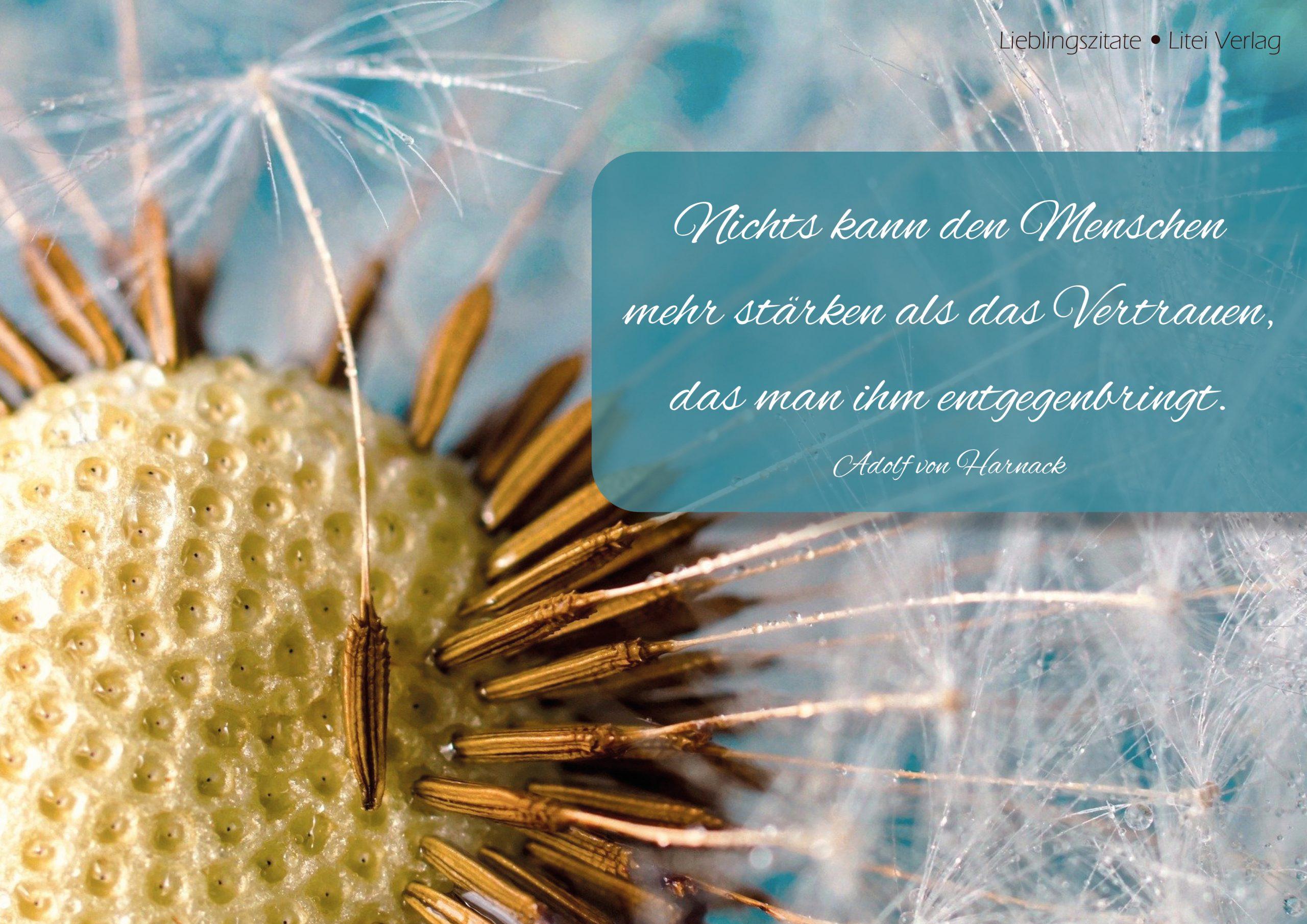 Zitat von Adolf von Harnack